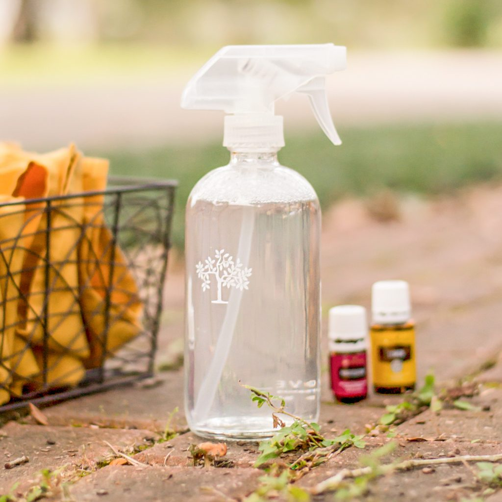 Homemade All-Purpose Cleaner (My Favorite!)