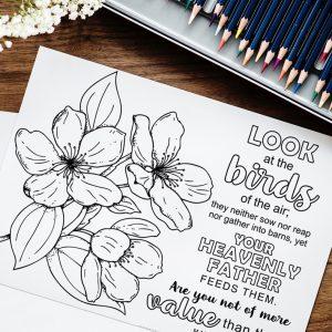 Free Coloring Page Matthew 6:26